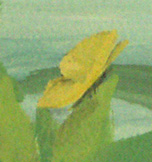 Nursery Mural (Yellow Butterfly Detail)